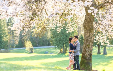 A Beautiful Afternoon Under Cherry Blossoms | Ellen & Michael