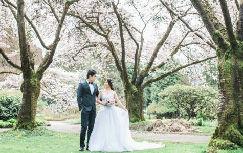 Stanley Park Cherry Blossoms Engagement Session | Renee & Joe